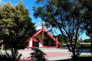 Read more about the article Introducing Tahia Te Marae